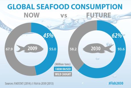 Cómo evolucionará el consumo. En azul, la influencia de la acuicultura; en gris, la de la pesca.